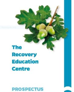 the recovery education centre